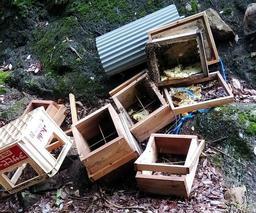 クマが壊したとみられるハチの巣箱=多可町八千代区俵田(多可町提供)