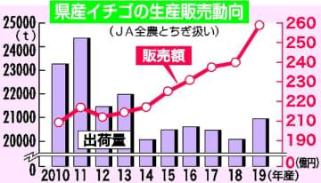栃木県産イチゴの生産販売動向