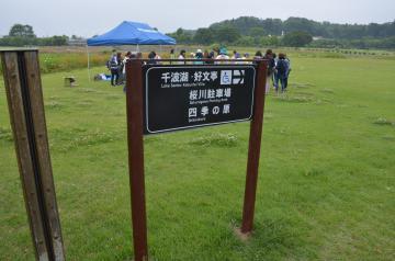 水戸の梅まつりを前に職員が自作した誘導案内板=水戸市の偕楽園公園