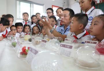 学校で薬物乱用防止教育を実施