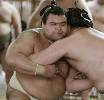 二所ノ関一門の連合稽古で汗を流す高安(左)=愛知県瀬戸市の尾車部屋