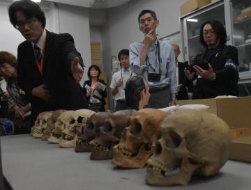 報道関係者らに縄文時代から近代までの人骨の骨格の違いなどについて説明する職員(左)=つくば市天久保の国立科学博物館