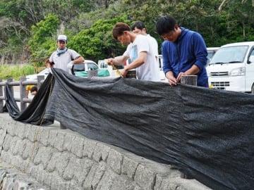 遮光ネットを設置するみなべウミガメ研究班のメンバー(和歌山県みなべ町山内で)