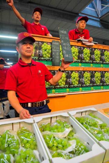過去最高値での取引もあった「ハニービーナス」の初競り=28日午前、宮崎市中央卸売市場