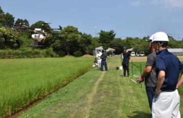 ドローンを操作して水田に農薬を散布する農家ら
