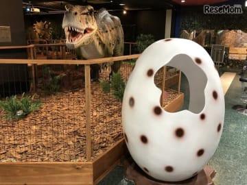 恐竜の卵の中に入ってSNS映えする写真を撮ることができる