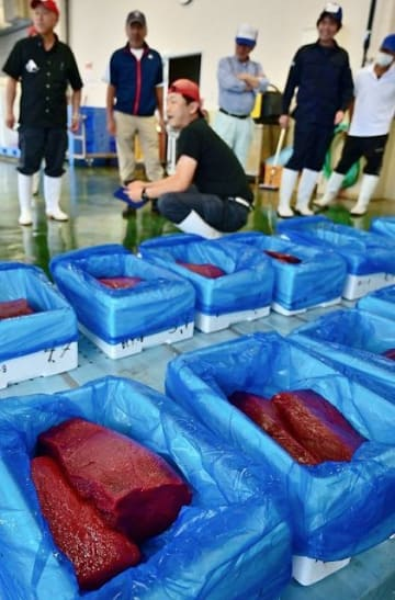 太地町漁協地方卸売市場に並べられたミンククジラの肉(4日)