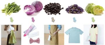 食品から生まれた色を着ることで食品ロスの解決策に