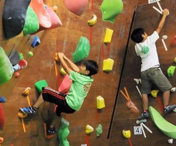 懸命に壁を登る子どもたち=熊本市北区