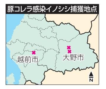 豚コレラ感染イノシシ捕獲地点