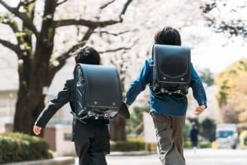 小学6年生の将来の職業に関する調査