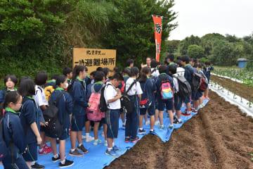 高台への避難訓練に取り組んだ市立武山中の生徒ら=横須賀市太田和