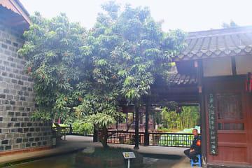 蘇軾の旧居「三蘇祠」にかわいいライチ泥棒 四川省眉山市