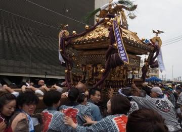 「関東三大神輿(みこし)」の一つとされる重さ約1.5トンの大神輿=13日、木更津市