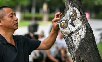 樹上の芸術作品が注目の的に 吉林省長春動植物公園
