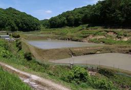 新緑に包まれる棚田=神戸市須磨区白川