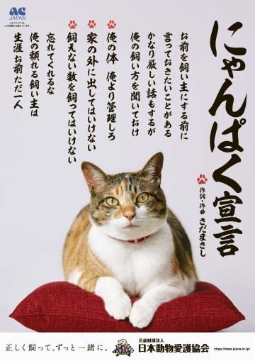 「にゃんぱく宣言」のポスター