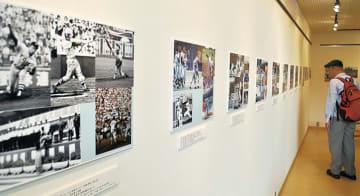 写真展「平成時代の神奈川高校野球」松坂投手や松井投手など@県立保土ケ谷公園内「Gallery coen(ギャラリーコーエン)」
