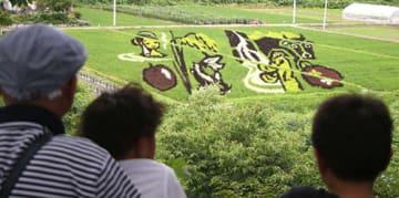 地元の名産を並べて「米沢」の字を浮かび上がらせた田んぼアート=米沢市