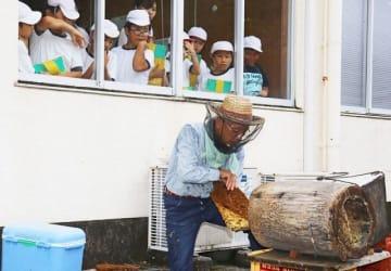 「蜜切り」を見学する児童(和歌山県古座川町直見で)