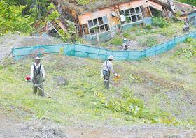 草刈り作業に汗を流す参加者たち