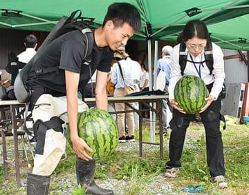 アシストスーツを着用し、スイカを持ち上げる参加者=尾花沢市