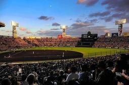 来年1月に西宮市の成人式会場となる阪神甲子園球場=同市甲子園町