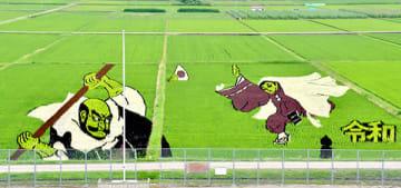 見頃を迎え、牛若丸と弁慶がくっきりと姿を現した「楯っ子田んぼアート」=最上町
