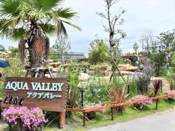 神戸どうぶつ王国の園内にオープンした新エリア「アクアバレー」(写真:ラジオ関西)