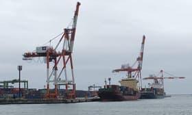 輸出入ともに上半期の取り扱いが減少している苫小牧港