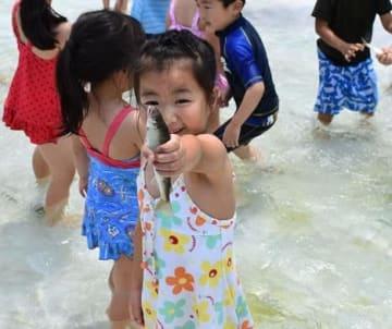 保育園児がアユのつかみ捕りを楽しんだ=市原市の養老川漁協