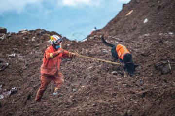 貴州省水城県の地滑り、発生3日目 救助活動続く