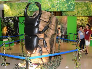 森をイメージした会場で巨大な昆虫のロボットや模型に見入る来場者=26日午前9時43分、岐阜市本荘、市科学館