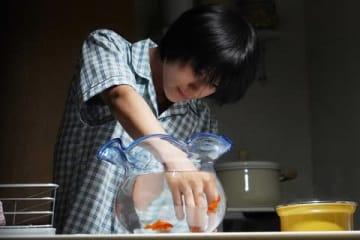 連続ドラマ「あなたの番です-反撃編-」第14話の場面=日本テレビ提供