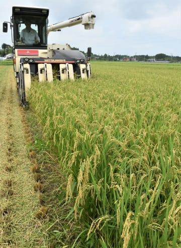 黄金色に実った「五百川」を収穫する稲刈り機=30日、いすみ市