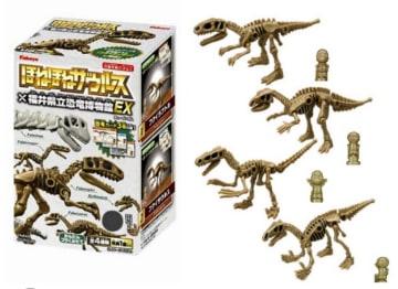 「ほねほねザウルス」と福井県立恐竜博物館とのコラボ商品=(C)Kabaya (C)FUKUI/psp