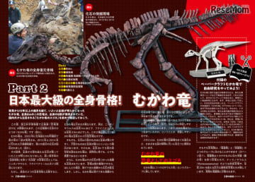 日本最大級の全身骨格!むかわ竜