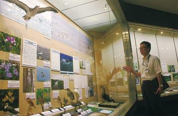 初の特別展「平塚学」総合博物館ならではの知的アドベンチャー @平塚博物館