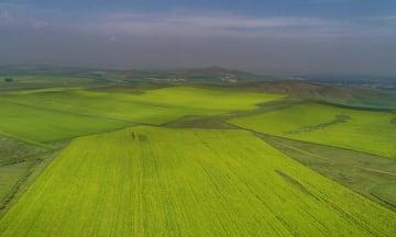 緑あふれる夏の塞北管理区 河北省張家口市