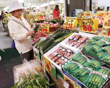 スーパーの野菜売り場=16日、東京都内