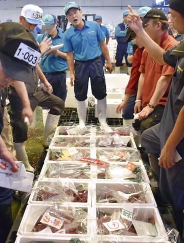仙台市中央卸売市場で行われたニタリクジラの初競り=1日午前