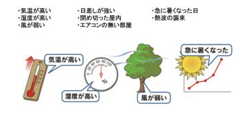 環境省 / Via wbgt.env.go.jp