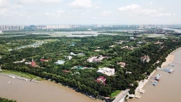 真夏を迎えた「氷の都」に広がる緑の湿地 黒竜江省ハルビン市