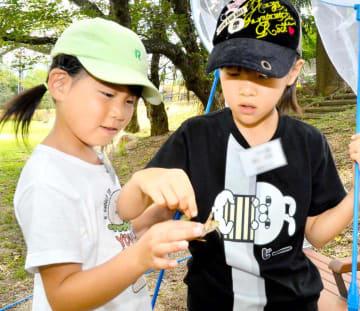 昆虫採集などを楽しんだ子どもたち
