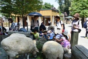 連日の暑さで集客に苦戦する札幌市円山動物園。園内は日傘を差したり、ベビーカーに日よけカバーを付けたりして暑さ対策する来園者が目立った=5日、札幌市中央区