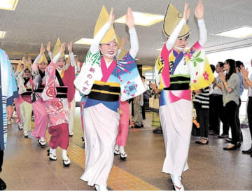 阿波おどりを舞って市役所に来庁した徳島市の訪問団