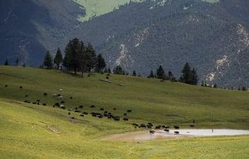 雅江の夏景色、観光客を魅了 四川省カンゼ・チベット族自治州