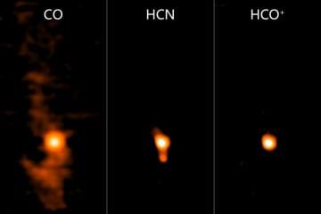 DESHIMAが観測したオリオン大星雲に存在する複数分子からの電波 (c) DESHIMA Project Team/Endo et al.
