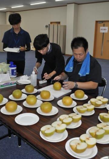 【ひさい梨の糖度を測る県中央農業改良普及センターの職員ら=津市久居新町のJA三重中央久居支店で】
