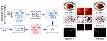 ゲノム情報等の非画像データを画像化する方法(左)と実例(右)(写真:理研の発表資料より)